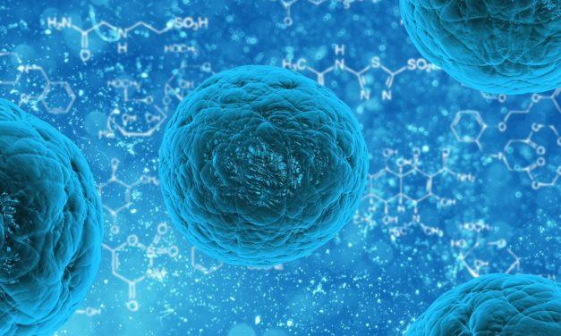 Papillomavirus : les hommes sont aussi concernés !