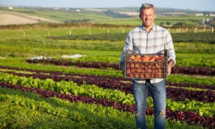Manger bio permet-il de manger mieux ?