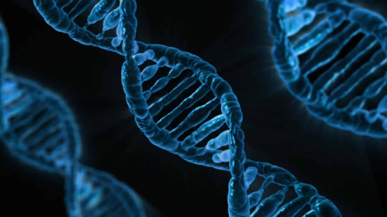 La recherche scientifique des maladie raie