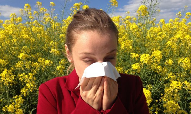Gare au pollen à l'arrivée du printemps !
