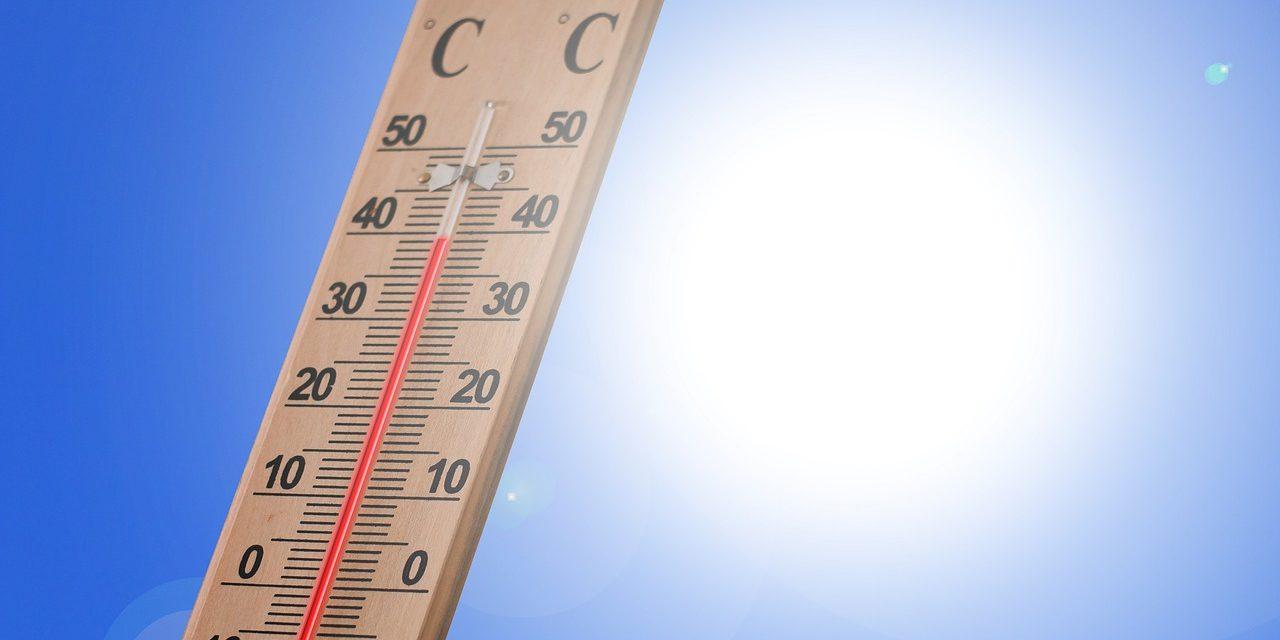 Canicule 2019 : Météo France annonce une semaine à 40°C