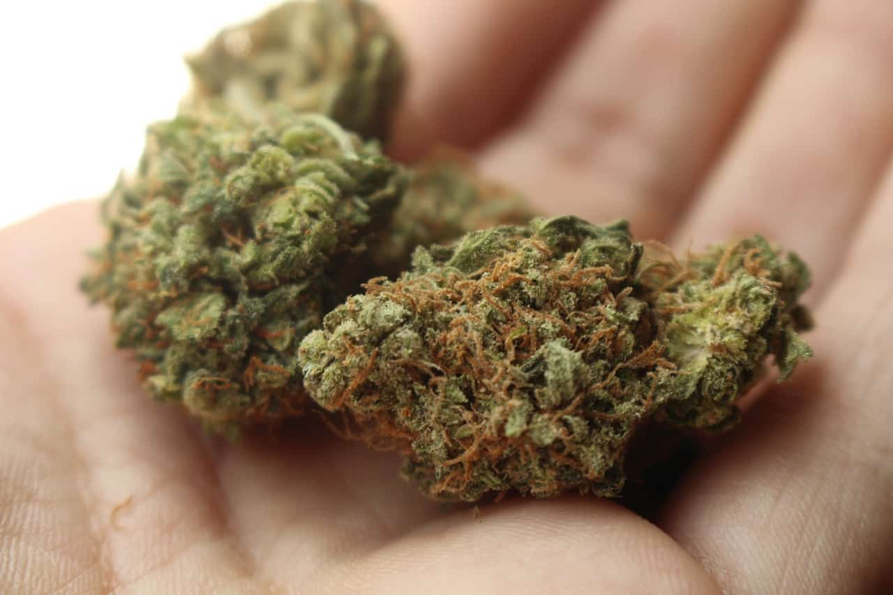Legalisation de l'usage récréatif du cannabis
