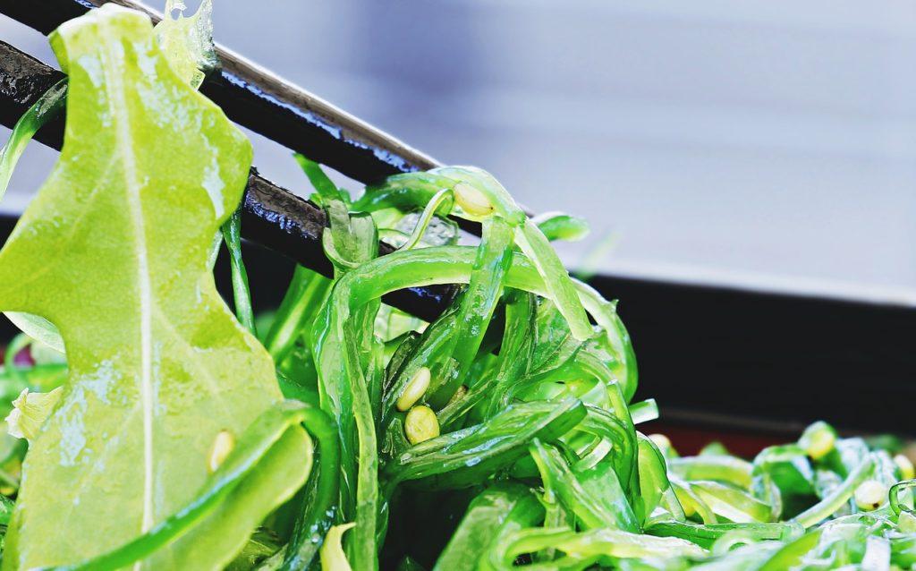 Algue alimentaire wakame fraiche